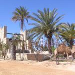 Czy w Tunezji jest bezpiecznie?